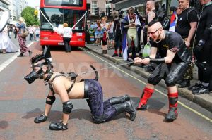 42nd-gay-pride-celebration-in-london_2205774